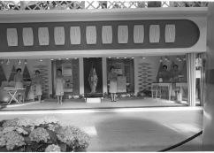 RDS electricity exhibit, with demonstrators