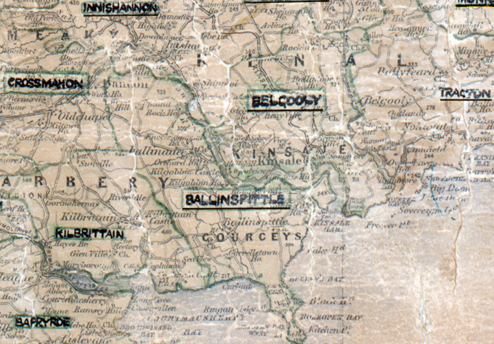 Ballinspittle-Map-cork