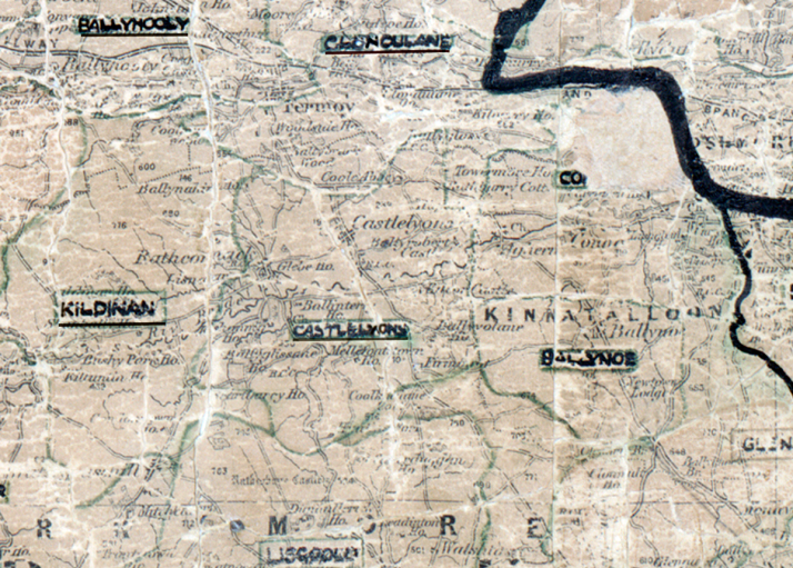 Castlelyons-Map-cork