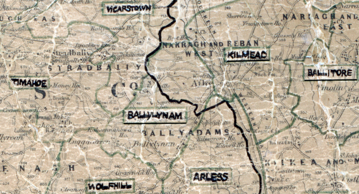 Ballylynan-Map-portlaoise