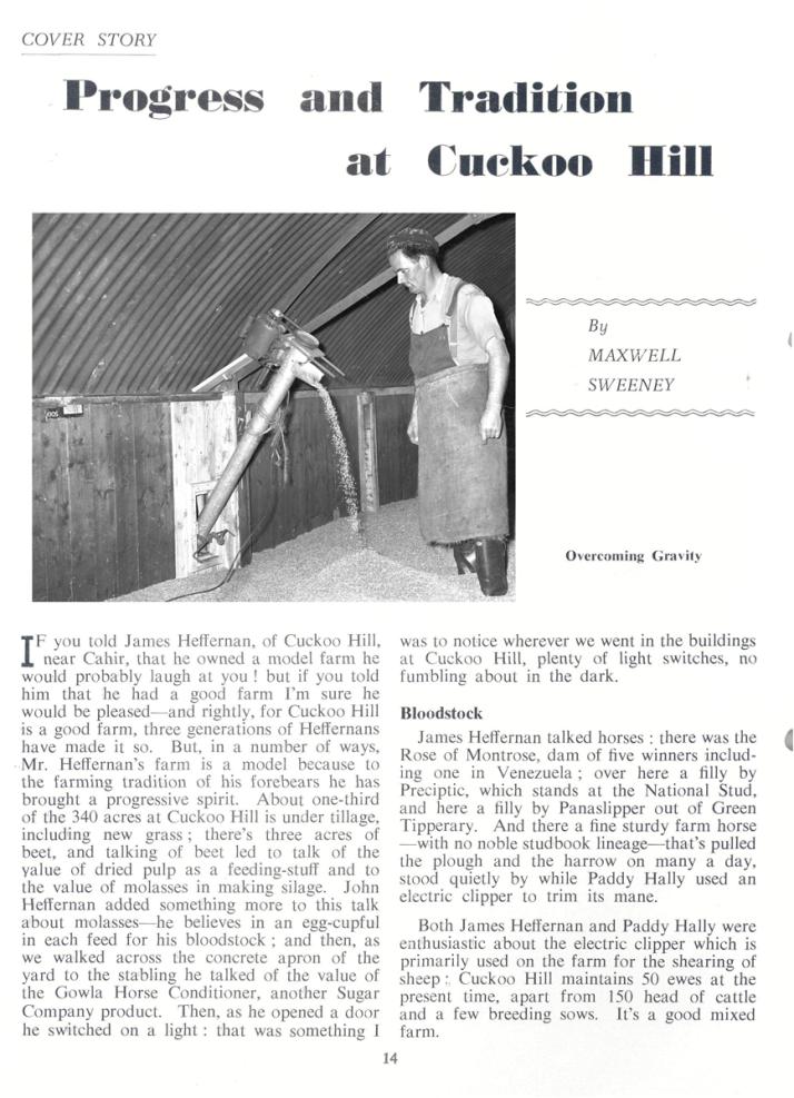 Cahir-photo-2-REO-News-October-19600016